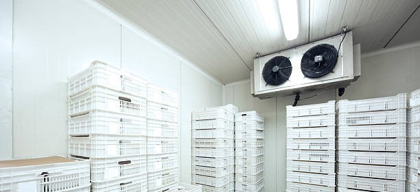 Temperature monitoring in fridges, freezers and cold rooms